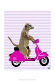 Meerkat on Pink Moped Plakaty autor Fab Funky