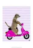 Meerkat on Pink Moped Print by  Fab Funky