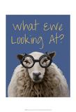 What Ewe Looking At Sheep Print Prints by  Fab Funky