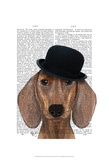 Dachshund with Black Bowler Hat Prints by  Fab Funky