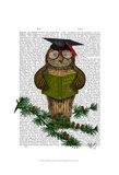 Owl Reading On Branch Art by  Fab Funky