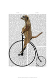Meerkat on Black Penny Farthing Posters by  Fab Funky