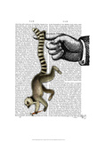 Ring Tailed Lemur on Finger Prints by  Fab Funky