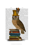 Owl On Books Art by  Fab Funky