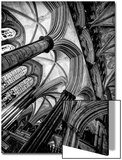 Interior View of Cathedral Vaulting Posters by Rory Garforth