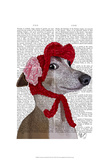 Greyhound with Red Woolly Hat Posters by  Fab Funky