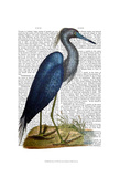 Blue Heron 2 Posters by  Fab Funky