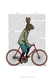Rabbit On Bike Art by  Fab Funky