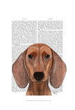 Dachshund Illustration Plain Prints by  Fab Funky