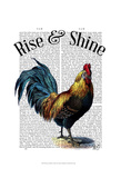 Rise and Shine Posters by  Fab Funky