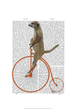 Meerkat on Orange Penny Farthing Posters by  Fab Funky