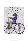 Zebra On Bicycle Posters by  Fab Funky