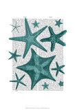 Green Starfish Collection Prints by  Fab Funky
