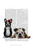 French Bulldog and English Bulldog Art by  Fab Funky