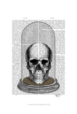 Skull In Bell Jar Art by  Fab Funky