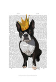 Boston Terrier And Crown Art by  Fab Funky