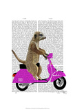 Meerkat on Pink Moped Art by  Fab Funky
