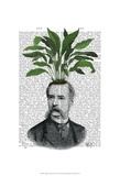 Aspidistra Head Plant Head Prints by  Fab Funky