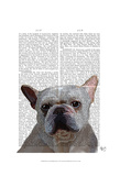 White French Bulldog Plain Posters by  Fab Funky