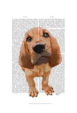 Bloodhound Puppy Prints by  Fab Funky