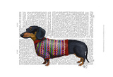 Dachshund With Woolly Sweater Posters by  Fab Funky