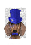 Dachshund With Blue Top Hat and Blue Moustache Poster by  Fab Funky