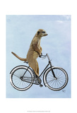 Meerkat on Bicycle Prints by  Fab Funky