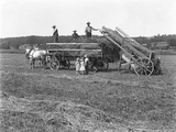 Farm Workers Loading Hay on to Horse-Drawn Hay Wagon as Three Children Watch Photographic Print by William Davis Hassler