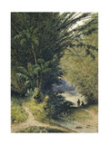 A Bamboo Grove in Trinidad Giclee Print by Jean-michel Cazabon
