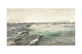 Porpoises Chasing Mackerel Giclee Print by Charles Napier Hemy