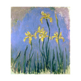 Yellow Irises; Les Iris Jaunes, C.1918-1925 Giclee Print by Claude Monet