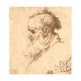 Head of a Bearded Man in Profile to the Left Giclee Print by  Rembrandt van Rijn