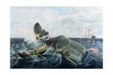 Capturing a Sperm Whale Giclee Print by William Page
