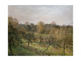 Sunset at Eragny, 1902 Reproduction procédé giclée par Camille Pissarro