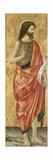 John the Baptist, C.1500 Giclee Print by Antoniazzo Romano