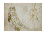 Recto: Studies of Costume Giclee Print by Antonio Pisanello