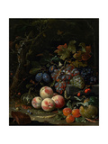 Still Life with Fruit, Foliage and Insects, C.1669 Giclee Print by Abraham Mignon