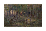 Violet and Gold, 1911 Giclee Print by Frederick McCubbin