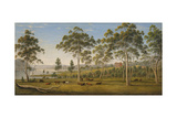 Mr. Robinson's House on the Derwent, Van Diemen's Land, C.1838 Giclee Print by John Glover