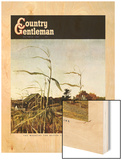 """Autumn Cornfield,"" Country Gentleman Cover, October 1, 1950 Wood Print by Andrew Wyeth"