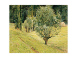 The Edge of the Forest, C.1887-92 Giclee Print by Theodore Robinson