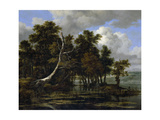 Oak Trees at a Lake with Water Lilies Giclee Print by Jacob Isaaksz Ruisdael