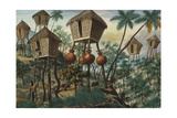 Manila and it's Environs: Huts of the Mountain Indians Giclee Print by Jose Honorato Lozano