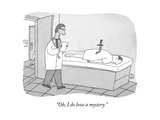 """Oh, I do love a mystery."" - New Yorker Cartoon Premium Giclee Print by Peter C. Vey"