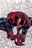 Dark Avengers No.11 Cover: Osborn and Norman Photo by Mike Deodato