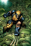 New Avengers No.5 Cover: Wolverine Crouching Plakater af David Finch