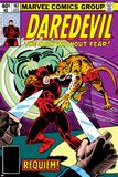 Daredevil No.162 Cover: Daredevil Fighting Poster autor Steve Ditko