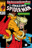 Amazing Spider-Man No.324 Cover: Sabretooth and Spider-Man Prints by Todd McFarlane