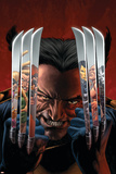 House of M: Masters of Evil No.2 Cover: Wolverine Photo by Mike Perkins