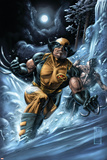 Wolverine: Origins No.33 Cover: Wolverine and Daken Prints by Doug Braithwaite